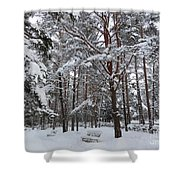 Bench In Muuga Woods Shower Curtain