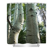 Bend In Time Shower Curtain