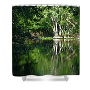 Bend Of The Ocklawaha River Shower Curtain