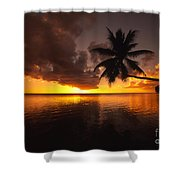 Bending Palm Shower Curtain