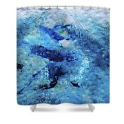 Beneath The Waves Shower Curtain