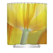 Beneath The Yellow Tulip Shower Curtain