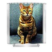 Bengal Cat Digital Oil Pastel Shower Curtain
