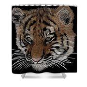 Bengal Tiger Cub Shower Curtain