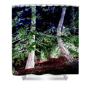 Bent Fir Tree Shower Curtain