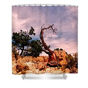 Bent The Grand Canyon Shower Curtain
