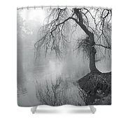 Bent With Gentleness And Time Shower Curtain