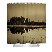 Bentley Pond Pines In Sepia Shower Curtain