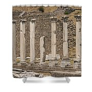 Bergama Colonnade Ruins Shower Curtain