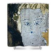 Berlin Wall Mural Shower Curtain