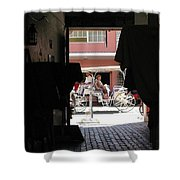 Bermuda Carriage Shower Curtain