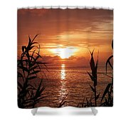 Bermuda Evening Shower Curtain