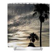 Bermuda Palms Shower Curtain