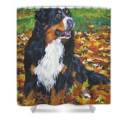 Bernese Mountain Dog Autumn Leaves Shower Curtain