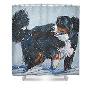 Bernese Mountain Dog In Drift Shower Curtain