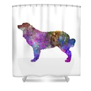 Bernese  Mountain Dog In Watercolor Shower Curtain