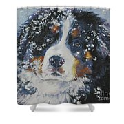Bernese Mountain Dog Puppy Shower Curtain