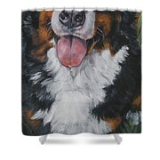 Bernese Mountain Dog Standing Shower Curtain