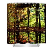 Bernharts Dam Fall 006 Shower Curtain