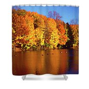 Bernharts Dam Fall 008 Shower Curtain