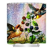 Berries And Birds Shower Curtain