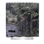 Berries On A Branch Shower Curtain