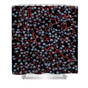 Berries Shower Curtain