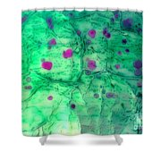 Berry Basket Shower Curtain