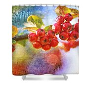 Berry Beautiful Shower Curtain