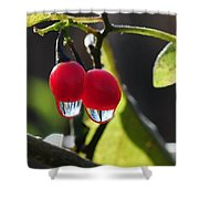 Berry Droplets Shower Curtain