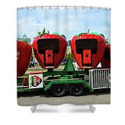 Berry Go Round  Shower Curtain