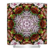 Berry Kaleidoscope Shower Curtain