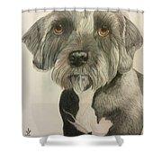 Bert Shower Curtain