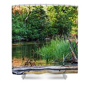Beside The River Shower Curtain