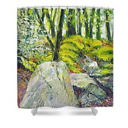 Beside The Routeburn Shower Curtain