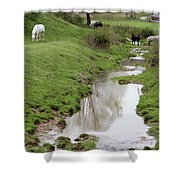 Beside The Still Waters Percherons Shower Curtain