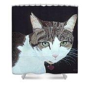 Best Cat Shower Curtain
