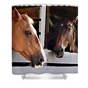 Best Friends Horse Chat Shower Curtain