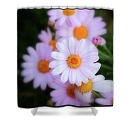 Best Wishes In This Time Of Loss Shower Curtain
