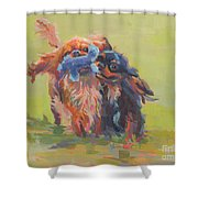 Besties Shower Curtain