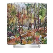 Bethany Woods Shower Curtain