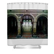 Bethesda Terrace Arcade 1 Shower Curtain