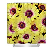 Better Is Beautiful Shower Curtain
