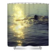 Betterton Silhouette Shower Curtain