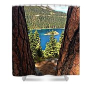 Between The Pines Shower Curtain