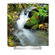 Betwixt The Mossy Rocks Shower Curtain