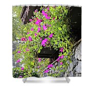 Beutiful Flowers Hang The Wall . Shower Curtain