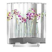 Beverly Buds 2 Shower Curtain