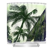 Beverly Hills Rodeo Drive 1 Shower Curtain
