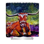 Bevo Shower Curtain